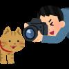 奥多摩地域 ライブカメラ情報