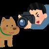 秩父地域 ライブカメラ情報